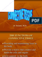 Connective Tissue Ss NEW