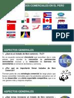Tlc Peru Eeuu 2017(1)
