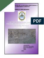 CANAL DE REGADIO - MEMORIA DESCRIPTIVA