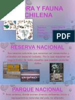 Reservas Nacionales Valery Díaz