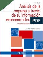 Análisis de La Empresa a Través de Su Información Económico-fina