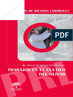 manual riesgo laborales_cultivo_olivar.pdf