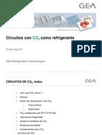2-_circuitos_de_CO2.pptx