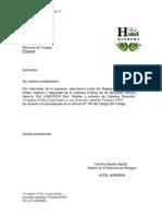 Carta conductora.docx