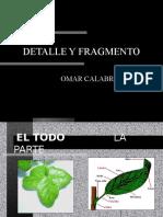 Detalle y Fragmento2013
