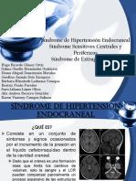 Equipo 2 Síndrome Hipertensión Intracraneal
