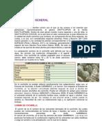 Obtencion Del Acido Carminico Proceso 2