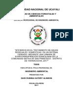 Eficiencia de Planta de tratamiento de aguas residuales