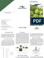 F-cultivo_coqueiro_anao.pdf