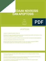 Perbedaan Nekrosis Dan Apoptosis