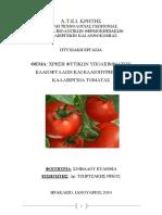 Sofiadou2010.pdf