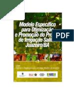 Modelo Específico Para Otimização e Promoção Do Projeto de Irrigação Salitre - Juazeiro-Bahia-Brasil, volume 4.