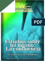 Estudios-Sobre-Mi-Mismo-La-Confluencia.pdf