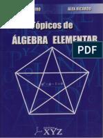 Docslide.com.Br Topicos de Algebra Elementar Ivan Monteiro e Alex Ricardo