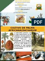 Mip - Palma Africana Ecuador