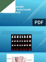 Metodele Irigării Canalelor Radiculare În Endodonţie