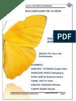 aa proyecto polos imprimirr.docx