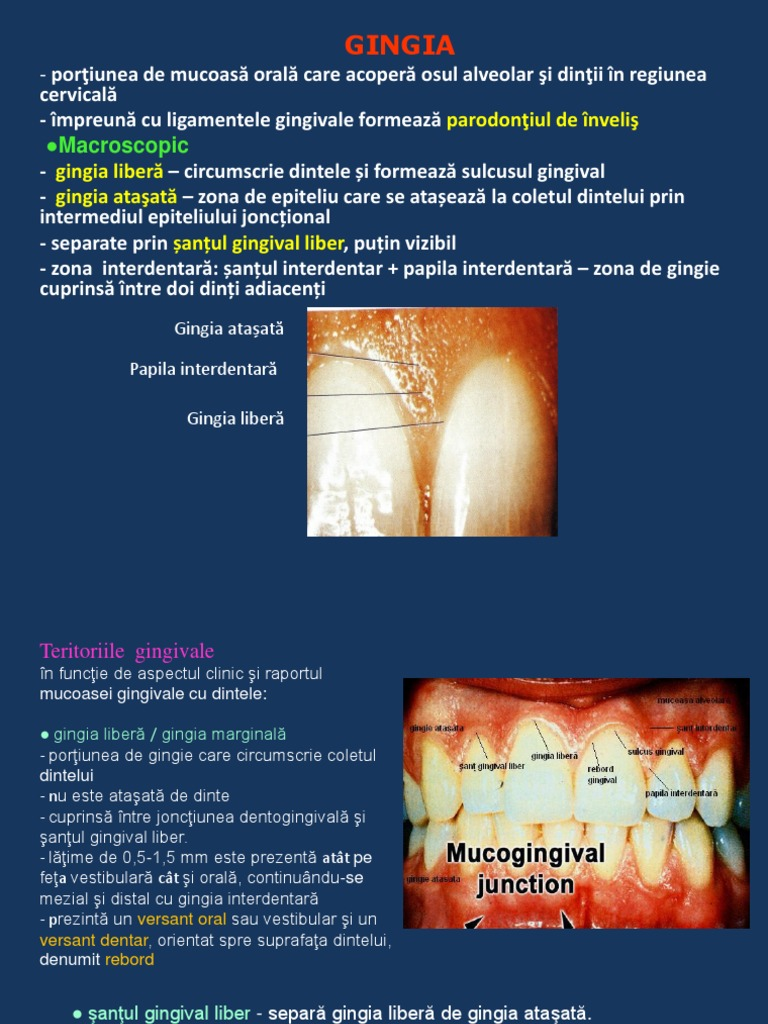 Mucoasa cervicală și nematode. synlab: Infectioase
