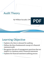 Audit Theory