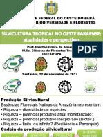 2017.11.22 Silvicultura Tropical Oeste Do Pará Everton