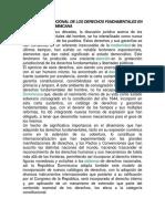 Tutela Constitucional de Los Derechos Fundamentales en La República Dominicana