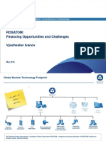 V.ivanov.financing Opportunities and Challenges