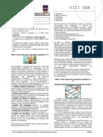 OBB VIII FASE 1.pdf