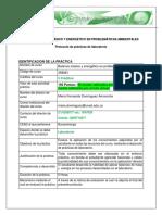Protocolo_componente_practico_2016-16-4.pdf