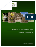 SunCoast Project Platypus Investigation Report