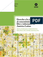 informe_consulta_previa_2015_web-2.pdf