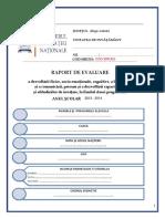 Raport_de_evaluare_CP.pdf
