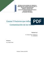 causas y factores de la contaminación de los suelos