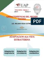 Caracteristicas Del RN PDF