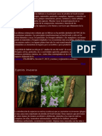 La Pérdida y Deterioro de Los Hábitats Es La Principal Causa de Pérdida de Biodiversidad