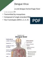 Pathophysiology of Dengue Encephalitis