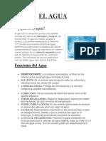 NICLE (1).docx