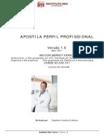 apostiladeperfilprofissionalv10julho2011instituto.pdf