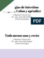 Patologías de Intestino Delgado y Colon