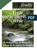 Jarocho Cuantico Archipielagos Xalapa