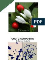 coci-gram-pozitiv-curs.pdf