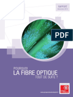 rapport-fibre-optique-final-dec2013-web.pdf