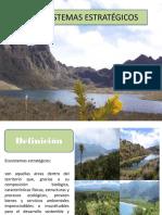 308504917-Ecosistemas-estrategicos-presentacion.pptx