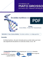 Aula Acidos Nucleicos e Codigo Genetico - Copia