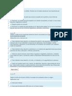 modelo texto cuuestionario.docx
