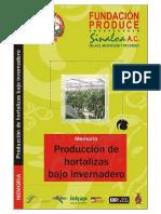 Produccion de Hortalizas Bajo Invernadero