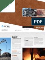 PEP 2013 Mineralurgia y Metaluriga Extractiva