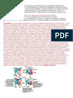 Sistema Circulatório - Questões com Gabarito