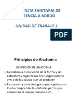 Principios de Anatomia