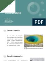 Crenarchaeota