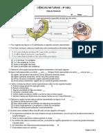 ficha celula-17-18.pdf